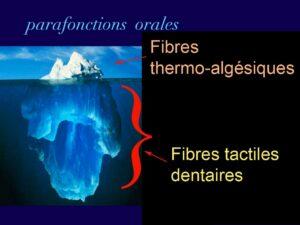 Parafonctions orales